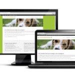 Comparateur d'assurances mutuelles pour chiens